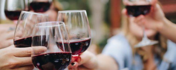 La France devrait devenir le premier consommateur mondial de vins bio en 2021 en doublant sa production de 2013.